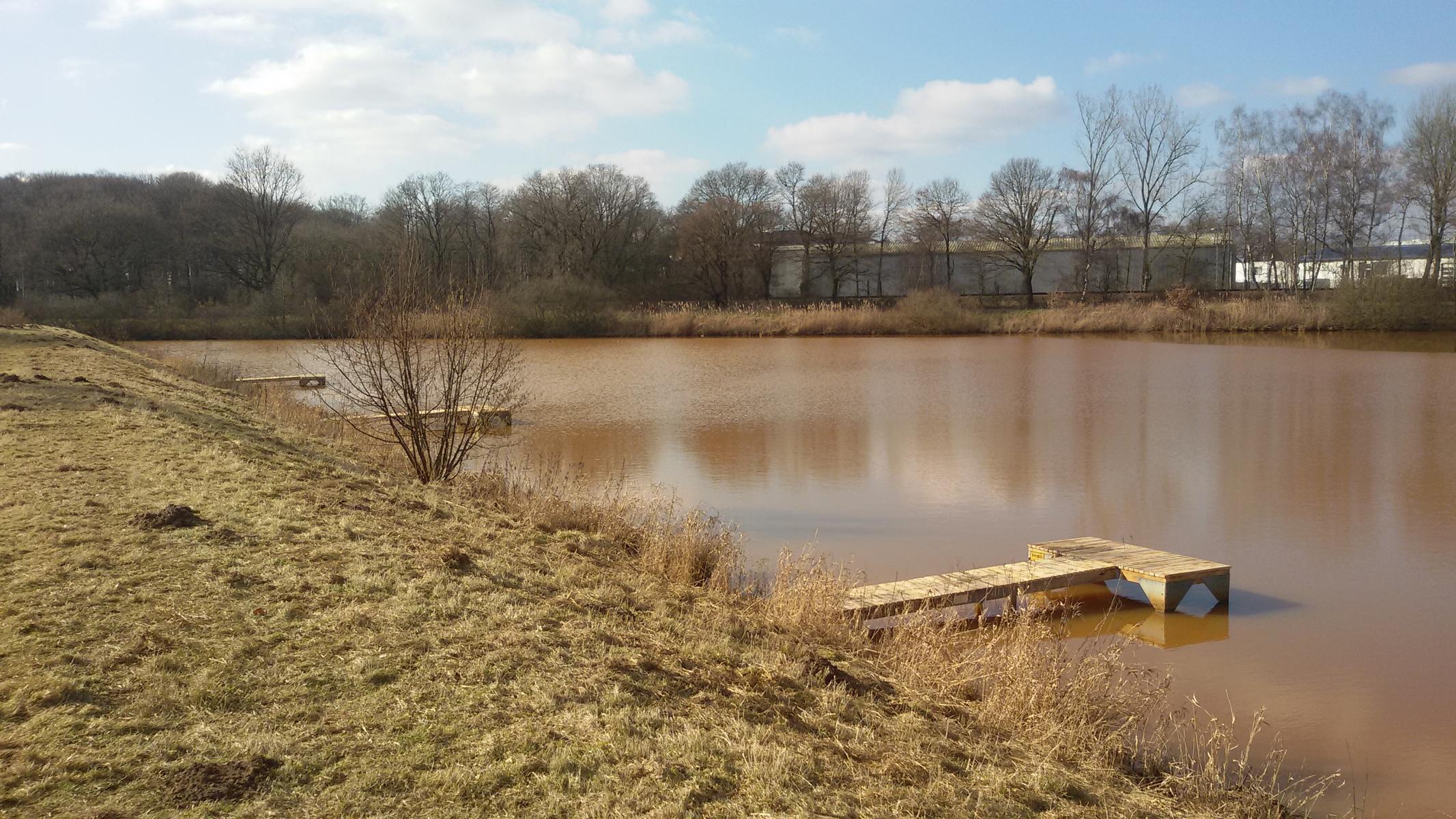 Arbeitsdienst Panrepel- und Osterholzer See 12.03.16